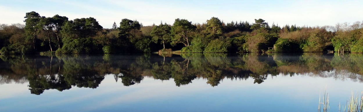 Drumlochart Holiday Park is surrounded by a number of interesting places and activities.